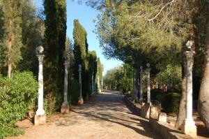 A stroll through the gardens