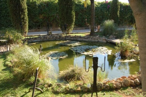 One of several garden ponds