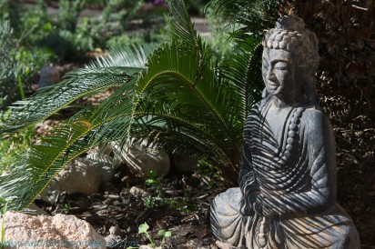 Buddah in the garden at The Pink Pepper Tree Mallorca