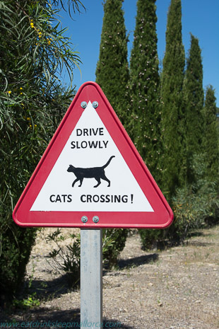 Beware cats crossing
