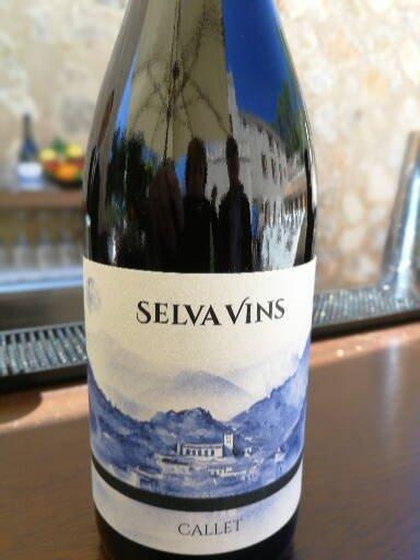 Selva Vins