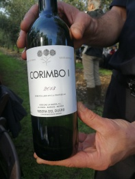 An exceptional wine from Bodegas La Horra