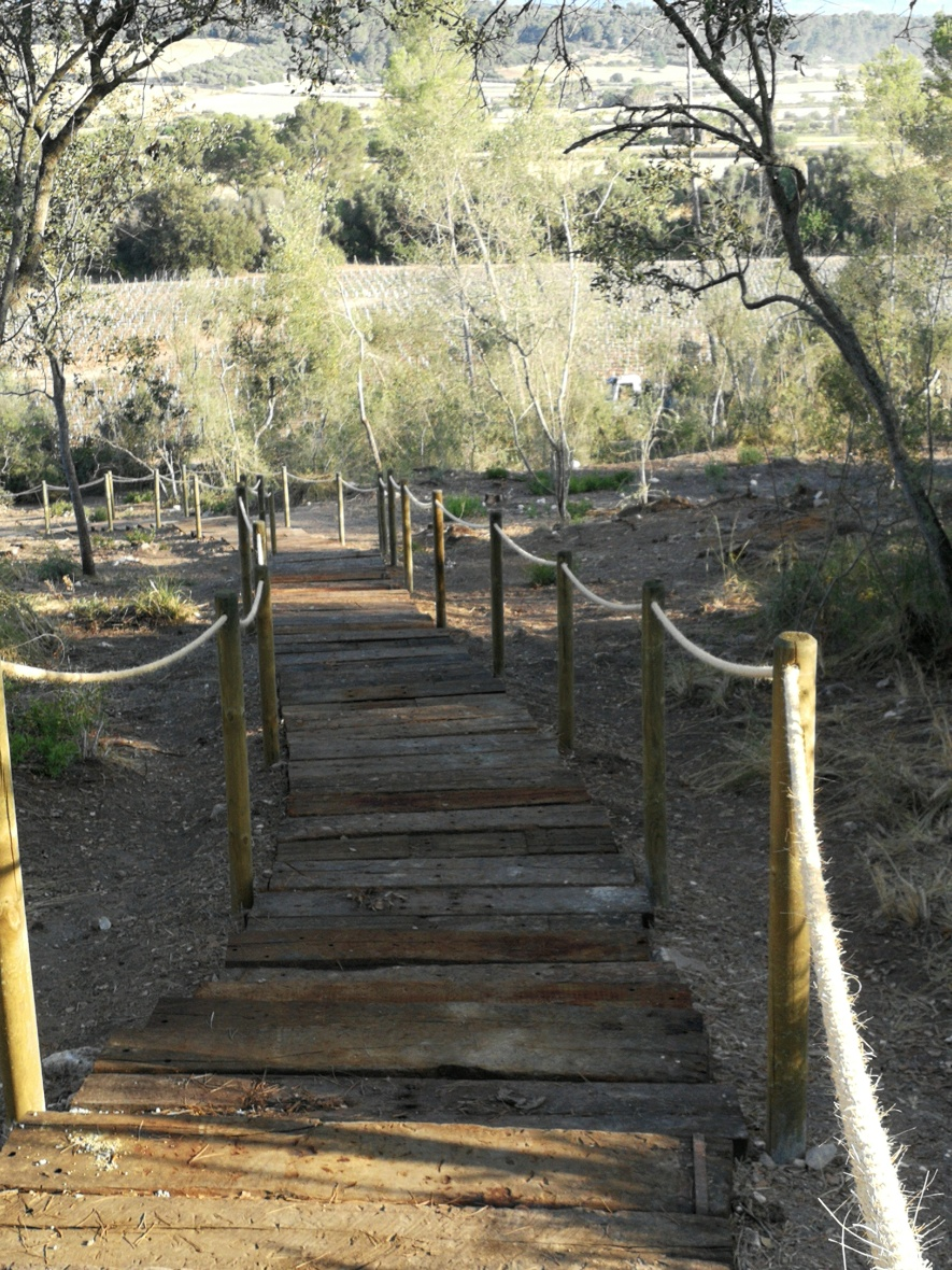 Walking/running route Finca Serena
