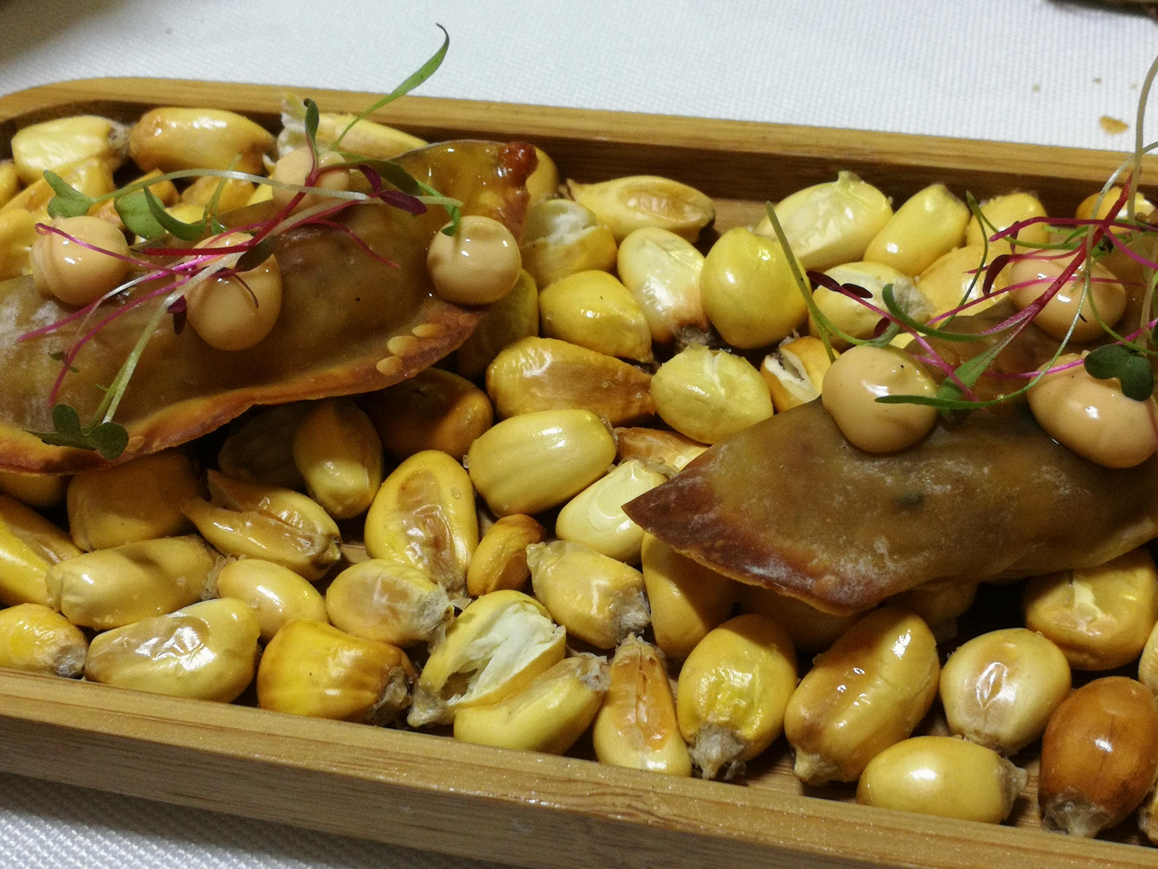 Hidden Kitchen Dinner in Mallorca Distillery