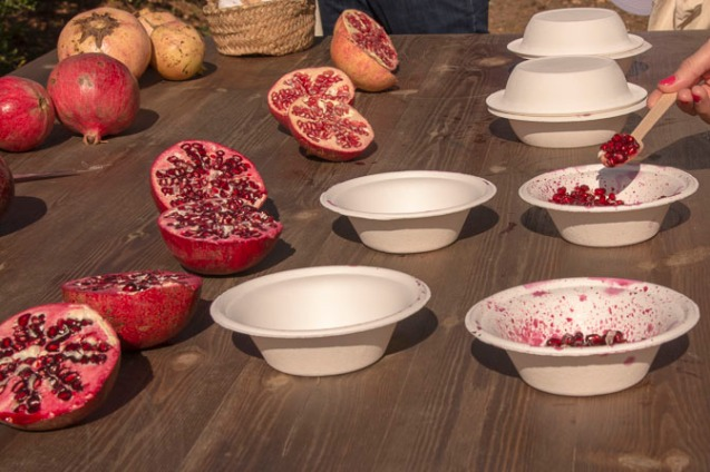 Comparing the taste of different pomegranates