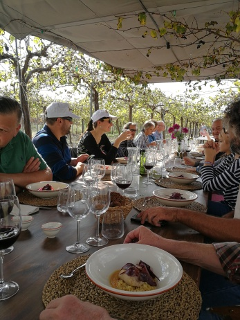 Alfresco lunch amidst vines growing table grapes